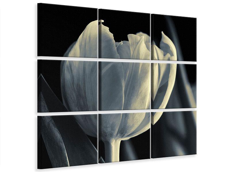 Leinwandbild 9-teilig Schwarzweissfotografie XXL Tulpe