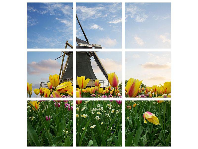 Leinwandbild 9-teilig Die Windmühle mit den Tulpen