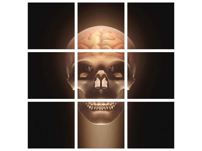 Leinwandbild 9-teilig Schädel