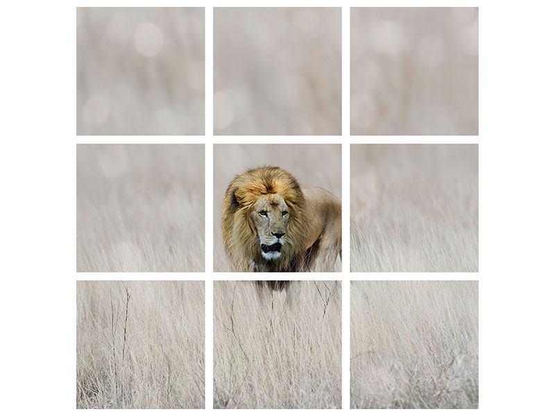 Leinwandbild 9-teilig Der Löwe