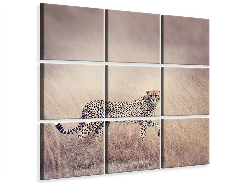 Leinwandbild 9-teilig Gepard