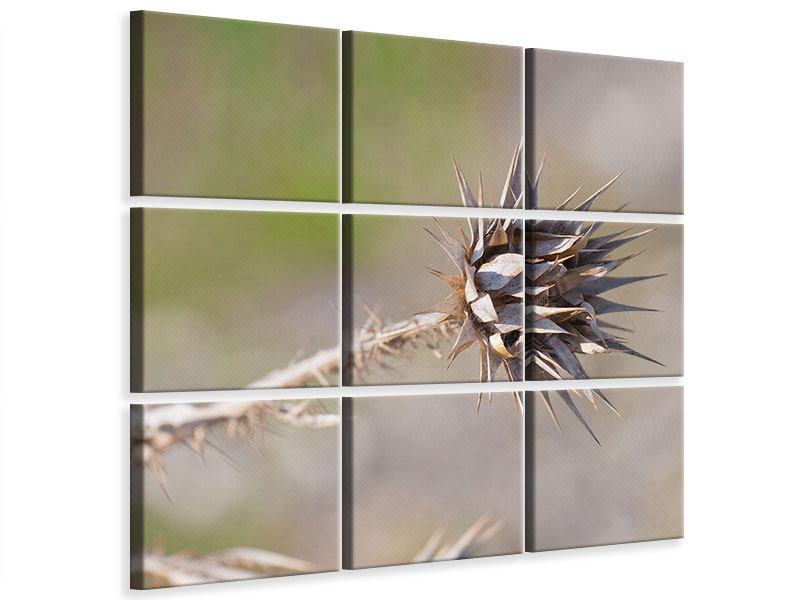 Leinwandbild 9-teilig Die Wüstenblume