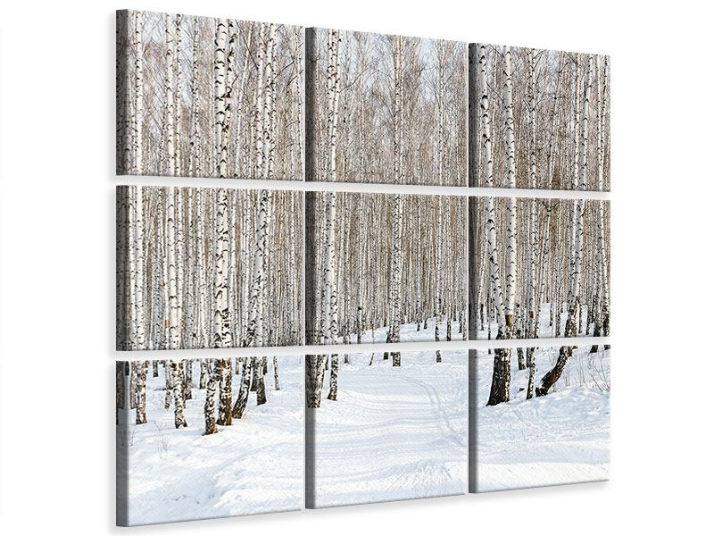 Leinwandbild 9-teilig Birkenwald-Spuren im Schnee