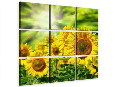 Leinwandbild 9-teilig Die Sonne und die Blumen