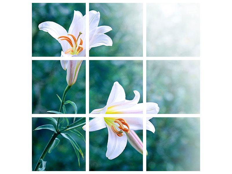 Leinwandbild 9-teilig Weisses Lilienduo