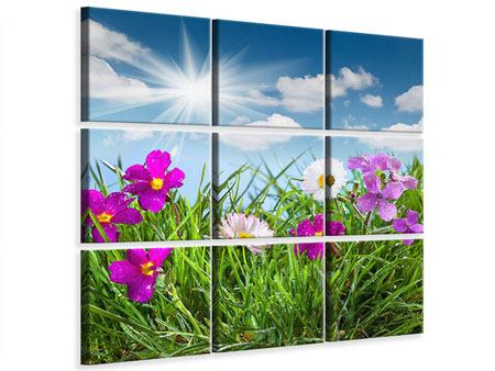 Leinwandbild 9-teilig Blumenwiese