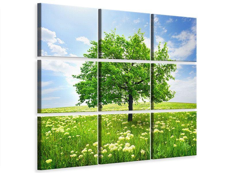 Leinwandbild 9-teilig Der Baum