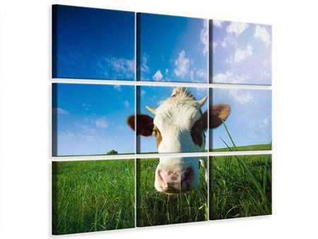 Leinwandbild 9-teilig Die Kuh