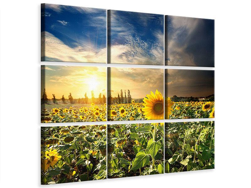 Leinwandbild 9-teilig Sunny Flowers