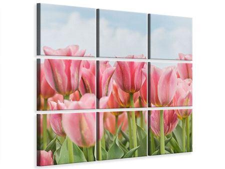 Leinwandbild 9-teilig Zarte Tulpen