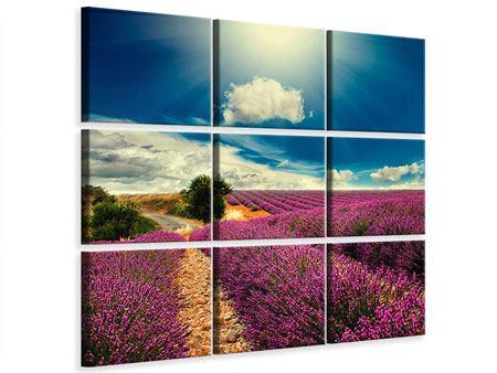Leinwandbild 9-teilig Das Lavendeltal