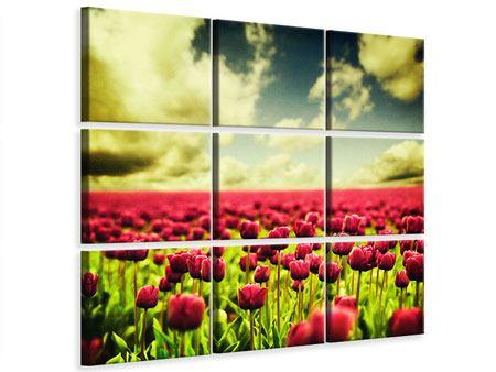 Leinwandbild 9-teilig Ein Tulpenfeld