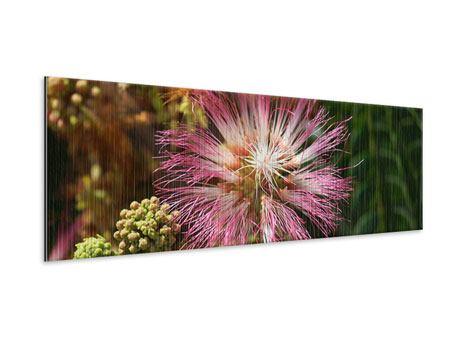 Metallic-Bild Panorama Die Regenbaumblüte