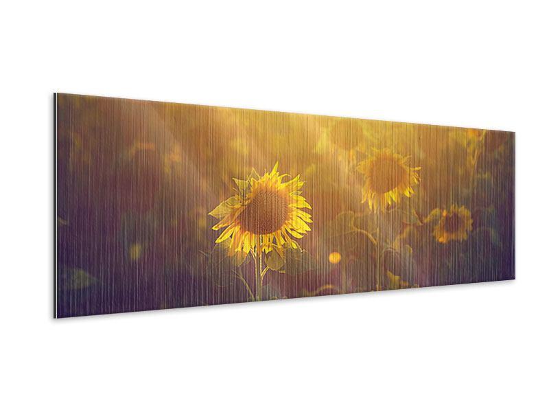 Metallic-Bild Panorama Sonnenblumen im goldenen Licht