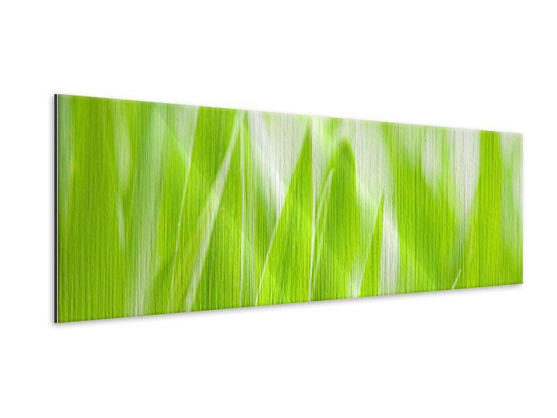 Metallic-Bild Panorama Gras XXL