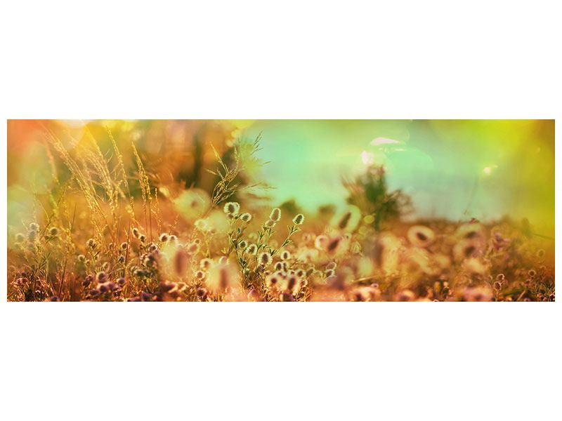 Metallic-Bild Panorama Blumenwiese in der Abenddämmerung
