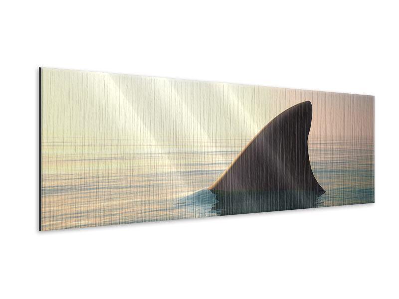 Metallic-Bild Panorama Haifischflosse