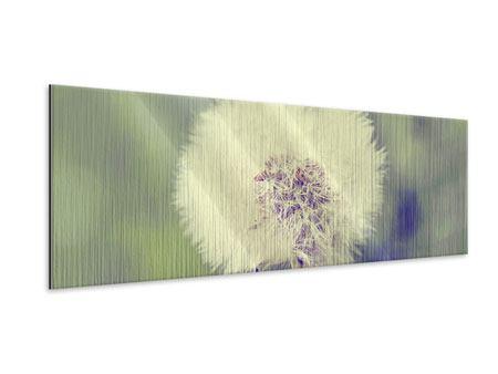 Metallic-Bild Panorama Die Pusteblume