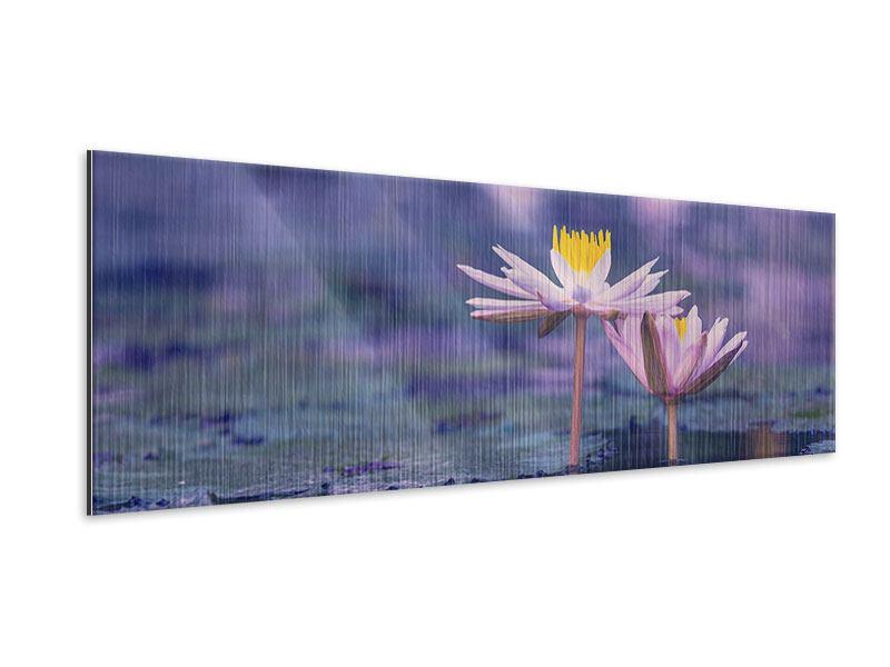 Metallic-Bild Panorama Lotus Duo im Sonnenaufgang