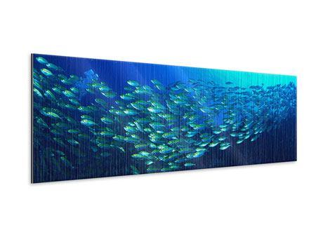 Metallic-Bild Panorama Fischschwarm