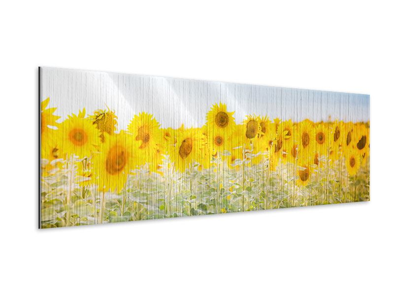 Panoramic Metallic Print In the Sunflower Field