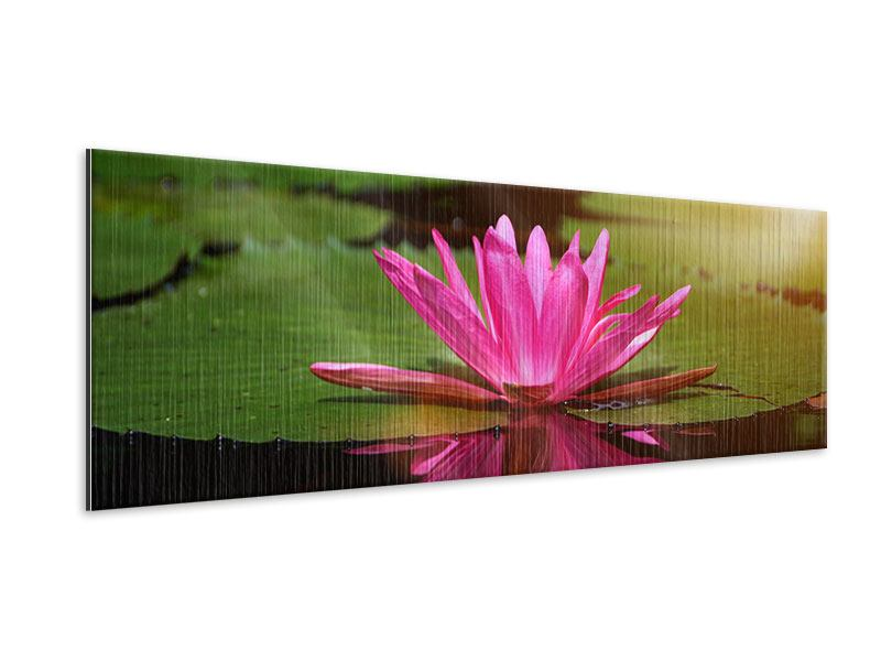 Metallic-Bild Panorama Lotus im Wasser