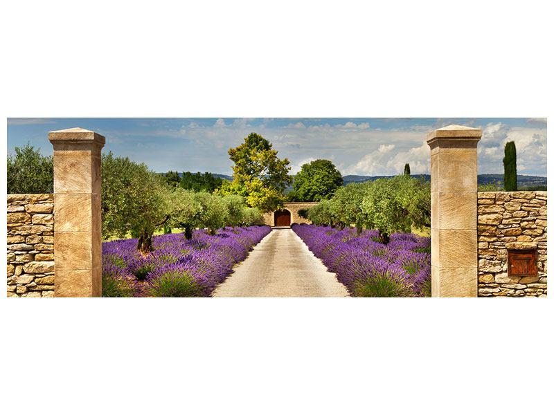 Metallic-Bild Panorama Lavendel-Garten