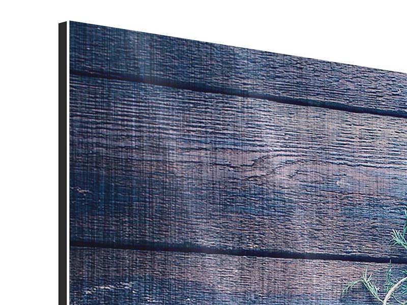 Metallic-Bild Panorama Fangfrischer Fisch