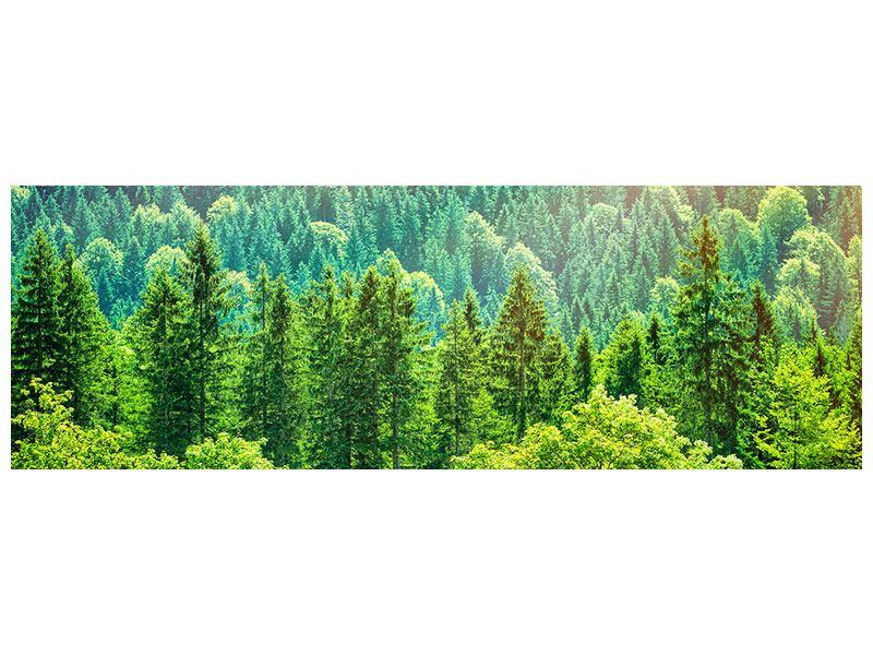 Metallic-Bild Panorama Der Waldhügel
