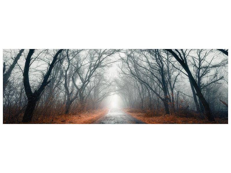 Metallic-Bild Panorama Mysteriöse Stimmung im Wald