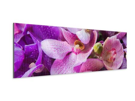 Metallic-Bild Panorama Im Orchideenparadies