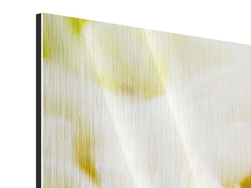 Metallic-Bild Panorama Trauringe auf Rosen gebettet