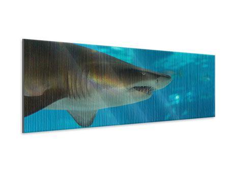 Metallic-Bild Panorama Der Haifisch