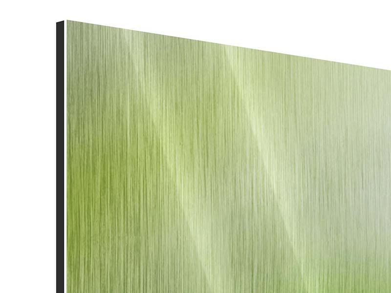 Metallic-Bild Panorama Frosch XXL