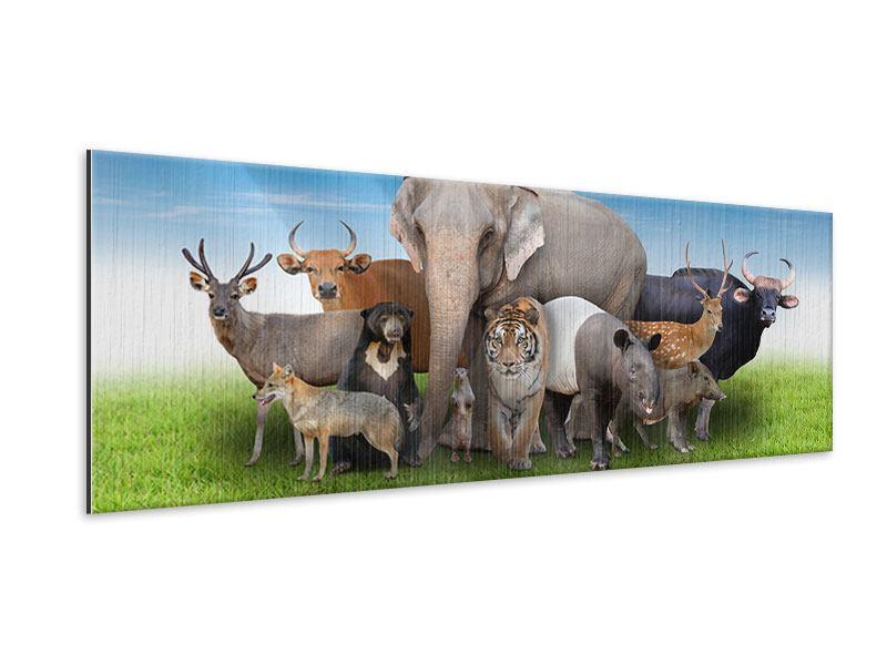 Metallic-Bild Panorama Warten auf die Arche Noah