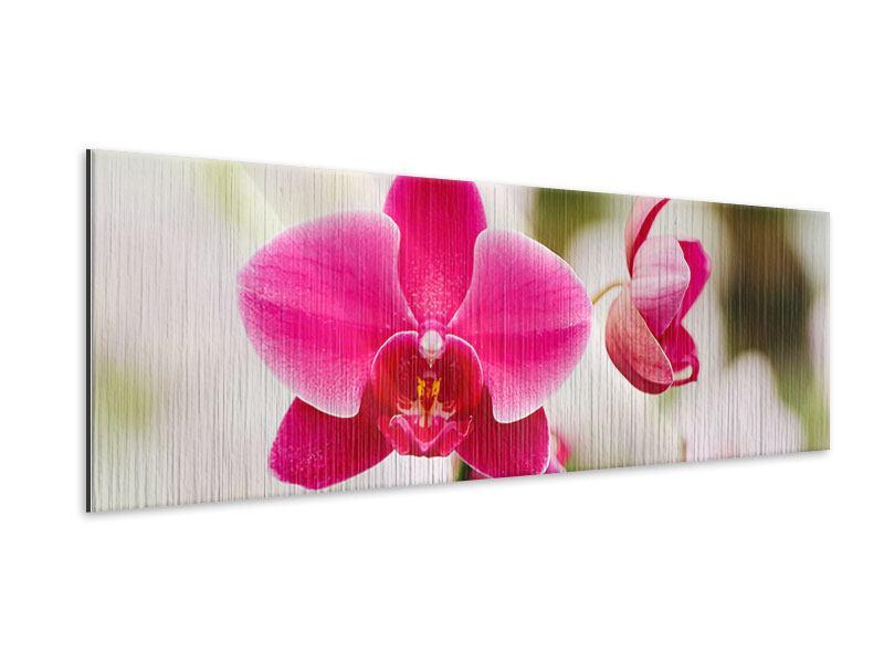 Metallic-Bild Panorama Perspektivische Orchideen