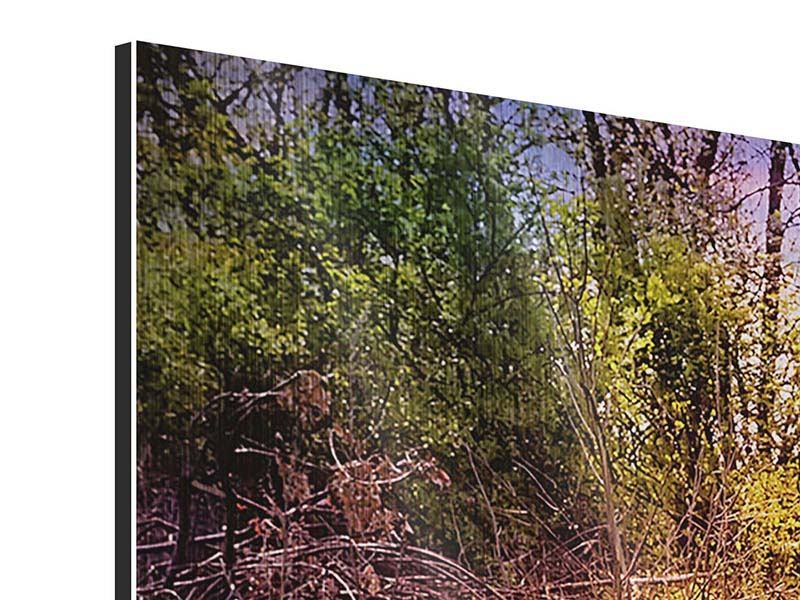 Metallic-Bild Panorama Der Waldpfad