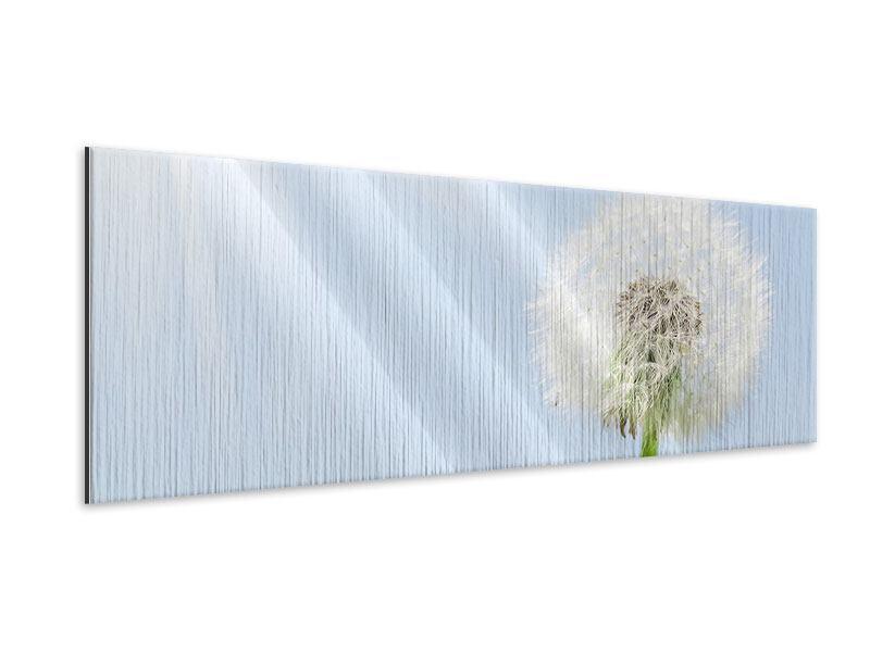 Metallic-Bild Panorama Der Löwenzahn im Sonnenstrahl