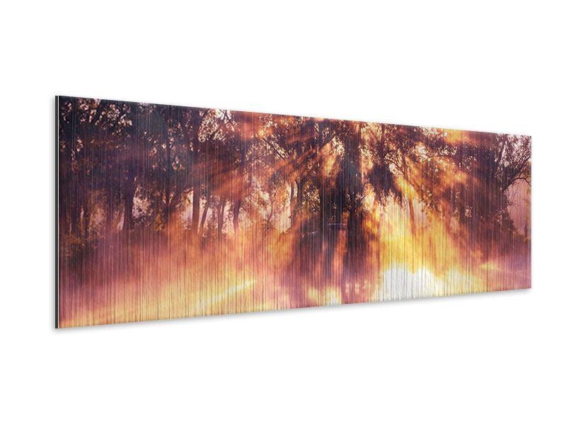 Metallic-Bild Panorama Die Waldspiegelung