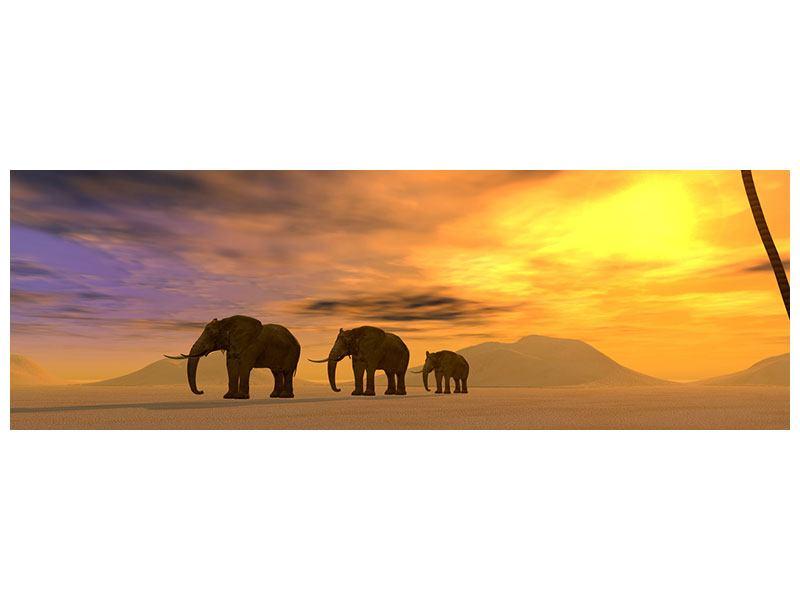 Metallic-Bild Panorama Wüstenelefanten
