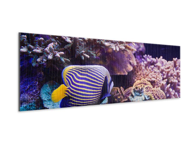 Metallic-Bild Panorama Faszination Unterwasser