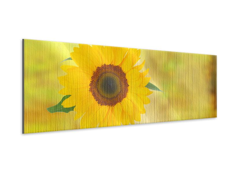 Metallic-Bild Panorama Die Sonnenblume
