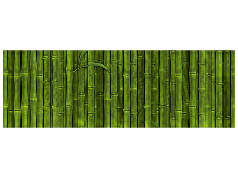 Metallic-Bild Panorama Wasserspiegelung Bambus