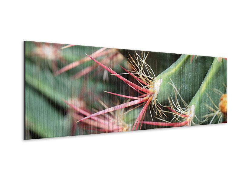 Metallic-Bild Panorama Die Kaktusblüte