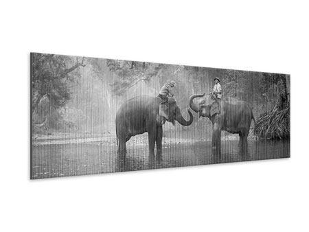 Metallic-Bild Panorama Zwei Elefanten