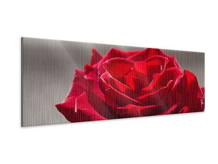 Metallic-Bild Panorama Rote Rosenblüte