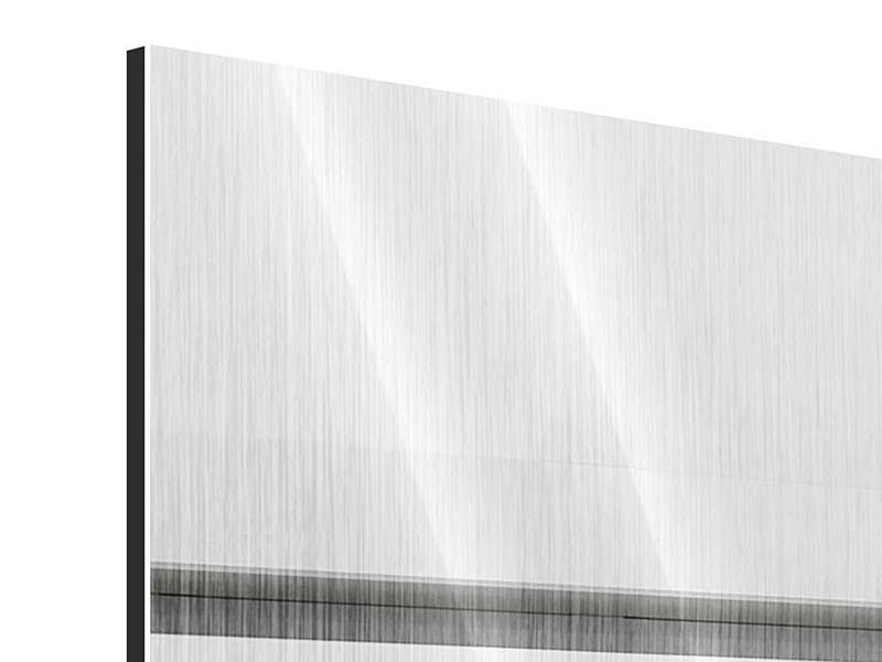 Metallic-Bild Panorama Weisser Flügel