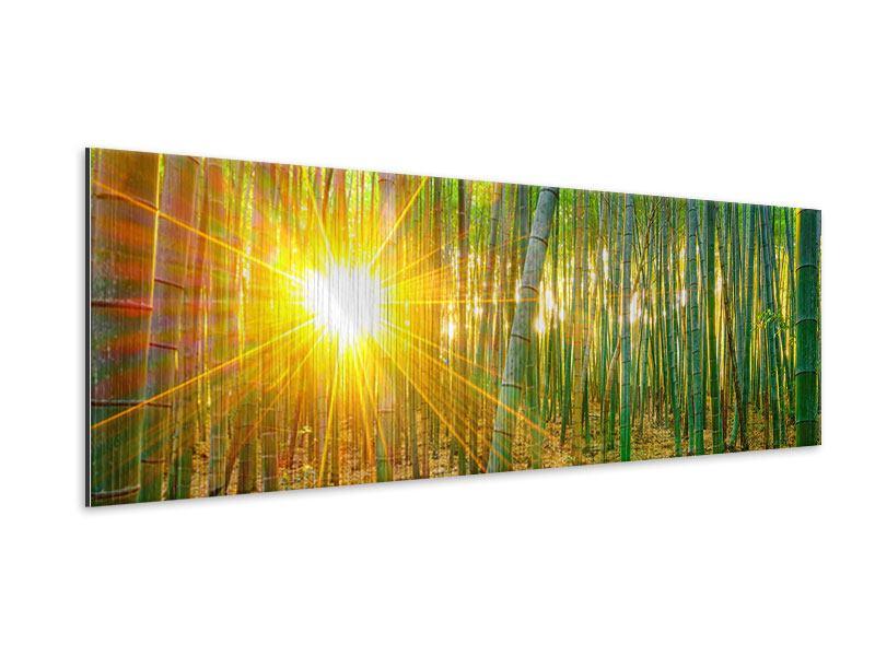 Metallic-Bild Panorama Bambusse