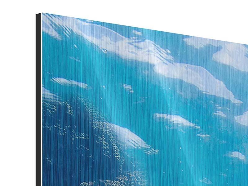 Metallic-Bild Panorama Die Wasserschildkröte
