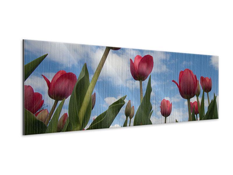 Metallic-Bild Panorama Tulpen im Himmel